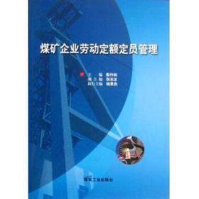 煤矿企业劳动定额定员管理 殷作如主编 9787502038748煤炭工业出版社