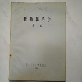 作物栽培学  玉米(油印版)