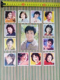 名星演员小卡片13张(一枚大,12枚小)