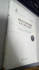 碳酸盐岩缝洞型油藏开发工程工艺技术(卷八)/碳酸盐岩缝洞型油藏开采机理及提高采收率基础研究丛书