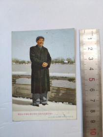 文革69年毛主席老照片卡片宣传画有手写赠言