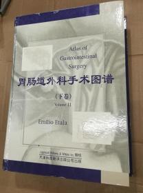 胃肠道外科手术图谱(下卷)