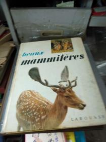 老的外文动物画册 Beaux--mammiferes