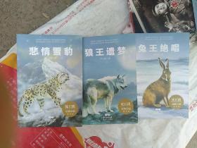 沈石溪动物小说读书会· 悲情雪豹