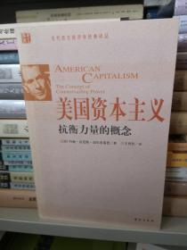 美国资本主义:抗衡力量的概念