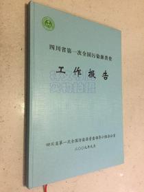 四川省第一次全国污染源普查工作报告  大16开精装本