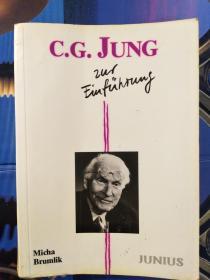 C.G.Jung zur Einführung