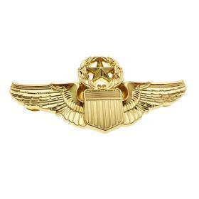 极品顶级美国空军顶级徽章金属不掉色可佩带西服上质量上乘堪比原品值得佩戴和收藏(金色)