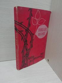 BRIAR ROSE(野玫瑰)