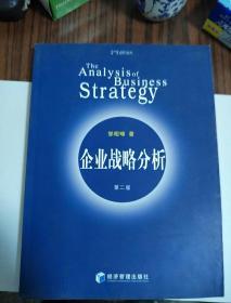 企业战略分析