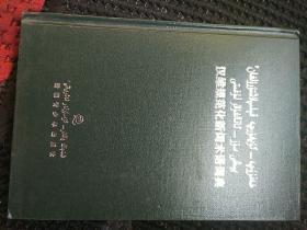 汉维规范化新词术语词典