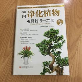 情趣生活系列:室内净化植物观赏栽培一本全