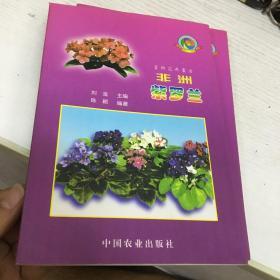 非洲紫罗兰:室内花卉皇后