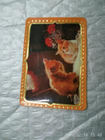 1987 年历卡 猫