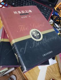 贝多芬之魂