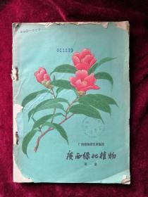 广西绿化植物 65年1版1印 包邮挂刷