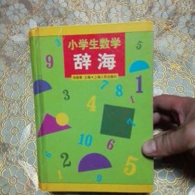 小学生数学辞海 精装 一版一印