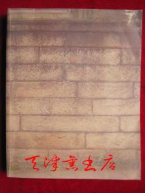 墙 Wall