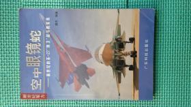 """空中眼镜蛇:新世纪的苏—27""""侧卫""""战斗机家族 (彩图版)"""