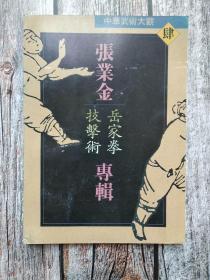 张业金岳家拳技击术专辑