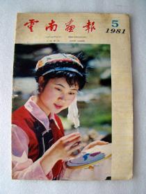 云南画报1981--5