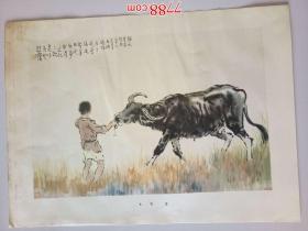 徐悲鸿:牧童(册页26*35cm)折叠寄送