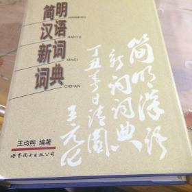 简明汉语新词词典