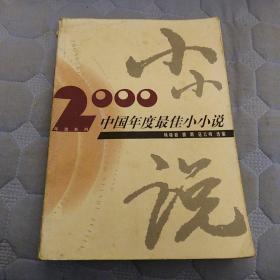 2000中国年度最佳小小说:漓江版·年选系列丛书