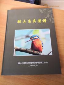 鞍山鸟类图谱