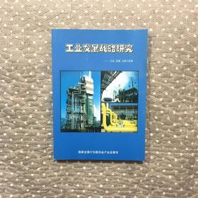 工业发展战略研究---石化 化肥 天然气管网