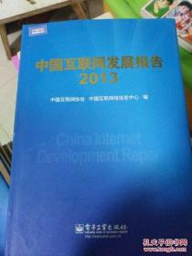中国互联网发展报告. 2013