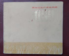 黑龙江生产建设兵团 美术作品选集