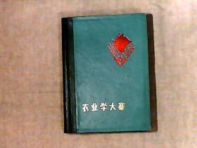 农业学大寨 精装彩页日记本 未使用过不缺页