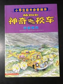 小学生课外必读绘本:神奇校车——穿越飓风