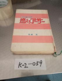 日本原版小说——《円卓之骑士物语》
