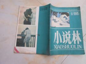 杂志;小说林1985年11期总第50期;金子{苏连科}
