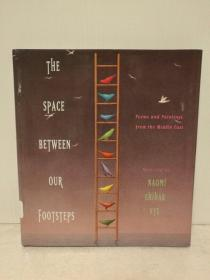中东诗歌与绘画精选集 The Space Between Our Footsteps: Poems and Paintings from the Middle East (中东研究)英文原版书