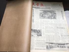 文学报1995  1-12   原报合订本