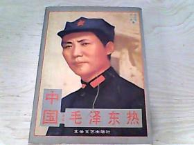 【张占斌 著,宋一夫 著】中国毛泽东热