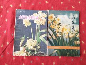 水仙花造型艺术 水仙花 二书合售