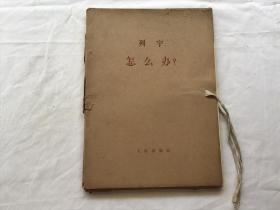 列宁-怎么办?1-4册大字本(函盒装) 一版一印