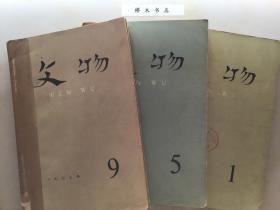 文物 1973年1-12期  装订三册