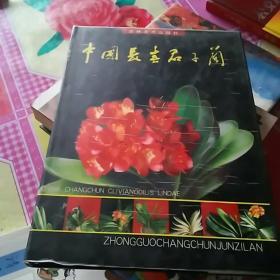 中国长春君子兰