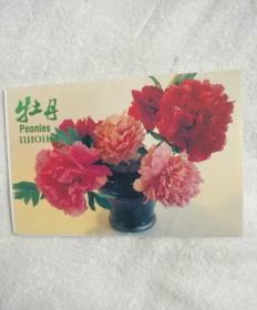 一九七八年牡丹名信片,一套十张。