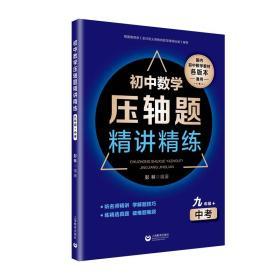 初中数学压轴题精讲精练(九年级+中考)