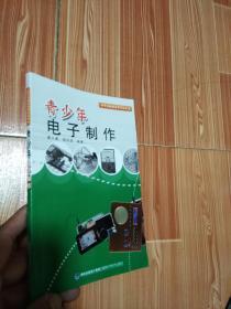 动手动脑快乐学习丛书:青少年电子制作2017年3印