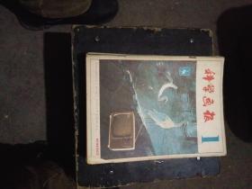 杂志:科学画报 1982(1-12)全