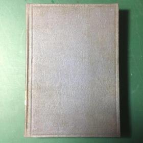 英文新字辞典