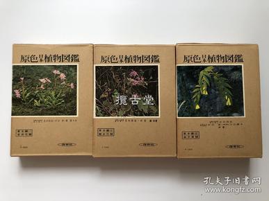 原色日本植物图鉴 草本编 上中下(合瓣花类/离瓣花类/单子叶类) 全3卷 保育社