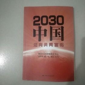 2030中国:迈向共同富裕.